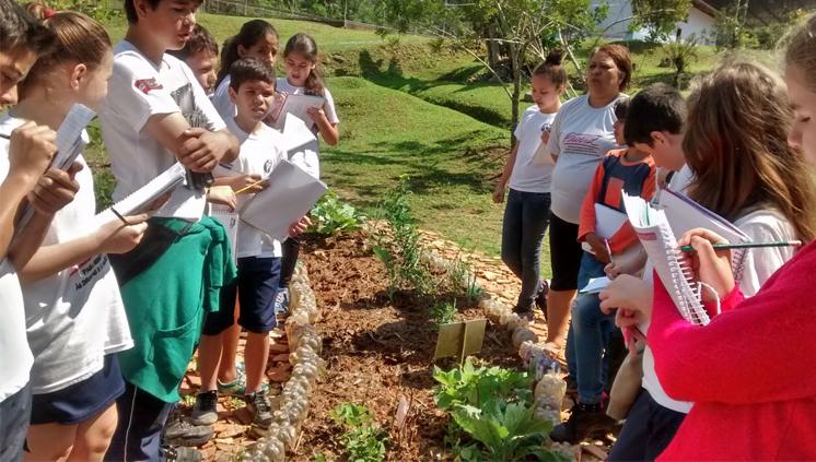 Escola pública catarinense é reconhecida por iniciativas voltadas para a sustentabilidade
