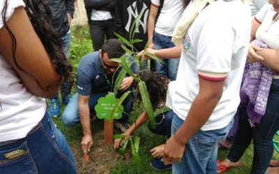 Novo projeto do IMA leva ações sustentáveis às escolas de Alagoas
