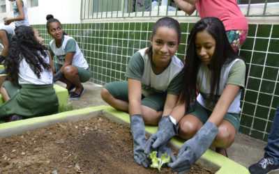 Alunos e professores criam Horta Sustentável em escola