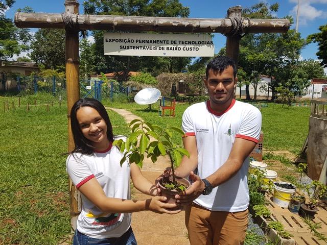 Escola pública do DF ganha prêmio por reúso da água e preservação de mananciais