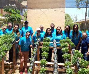 Voluntários criam horta hidropônica em escola pública de Maceió