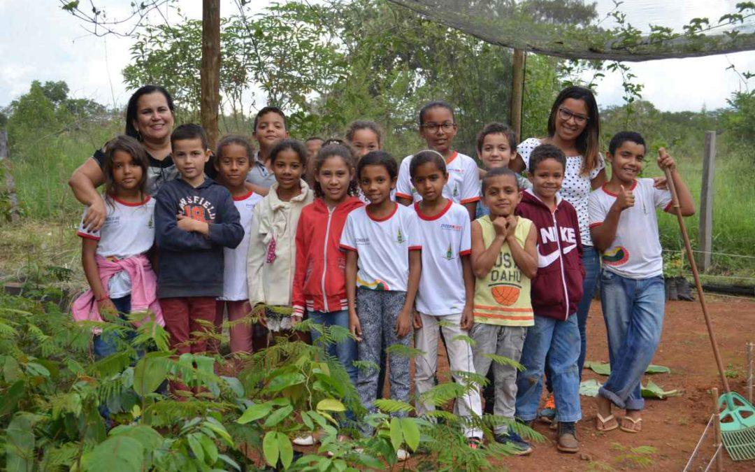 Escola rural cria projeto voluntário para a preservação do cerrado