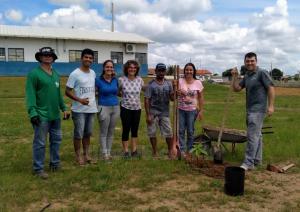 Projeto interdisciplinar em Primavera do Leste (MT) ensina matemática com plantio de árvores